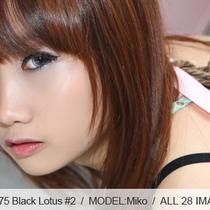 No.00275 Black Lotusl #2  可愛い女の子の着衣緊縛し調教