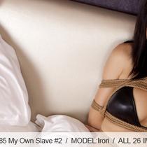 No.00385 My Own Slave #2 このビキニ着ているの子は私の緊縛専用の奴隷です、股縄はきづようだ、後高手小手縛りもね。