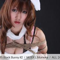 No.00415 Black Bunny #2 セクシー黒いバニーガールこの菱縄縛りな緊縛式をすきだ。