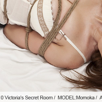 No.00110 Victoria's Secret Room [27Pics]