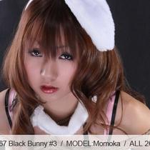 No.00467 Black Bunny #3 できだな、この新し緊縛式。黒いバニーガールは新し菱縄縛りがきにでる。